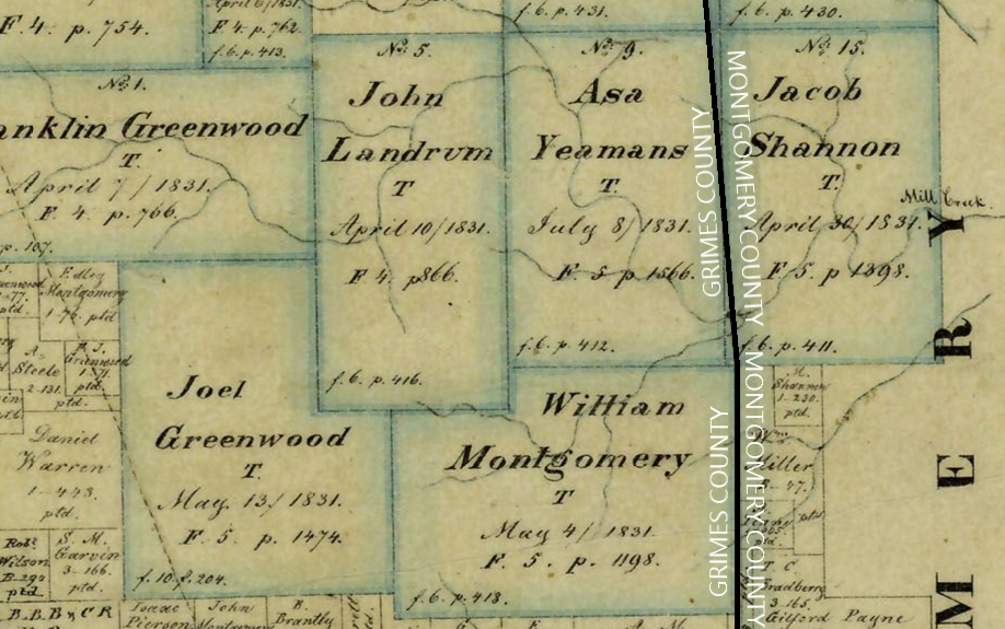 1858 Map of Grimes County without markings